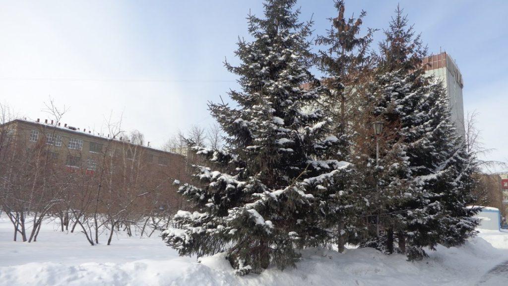 19 1024x576 - A vida na Siberia